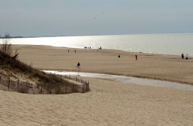 Chicago area campgrounds indiana dunes state park