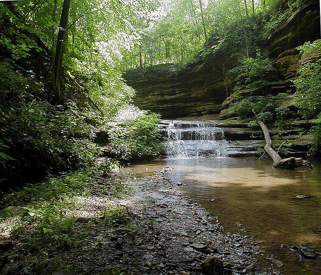 Starved Rock State Park Camping Information