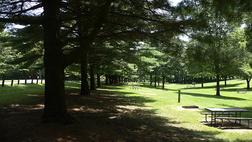white pines forest state park campground