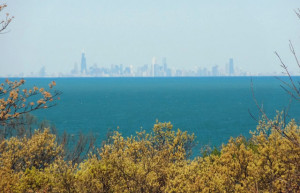 chicago skyline indiana dunes