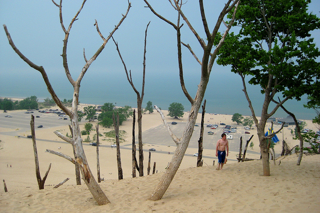 warren dunes michigan